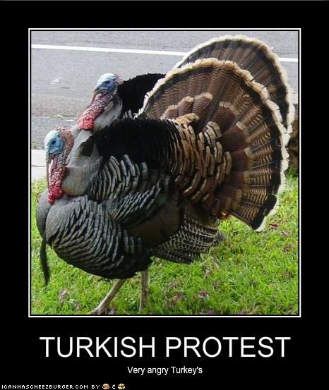 Turkish Protest