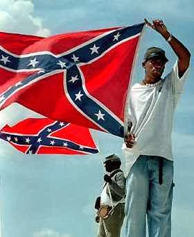 Ants & Grasshoppers: Visual Quiz-- Confederate Flag: Yes or No